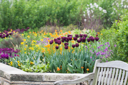 gardening tips in wet weather