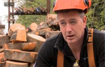 Eamonn O Neill, Tree Surgeon