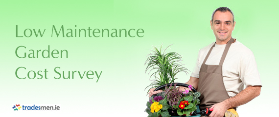 Low Maintenance Garden Cost Survey