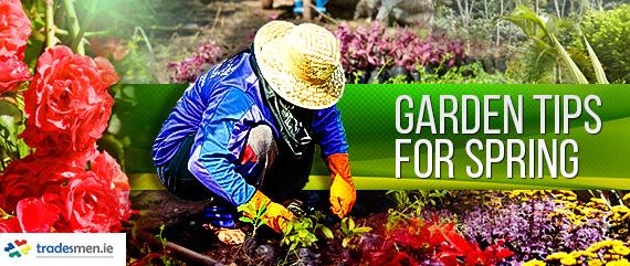 Garden Tips For Spring