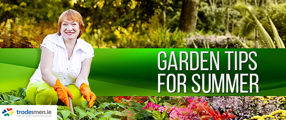 Garden Tips for Summer