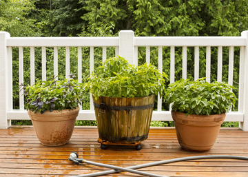 Garden Decking with White Railing and Decorative Flower Pots