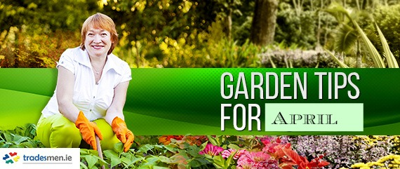 Garden tips for April