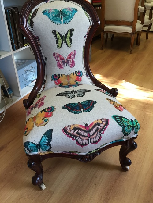 Harlequin butterfly fabric