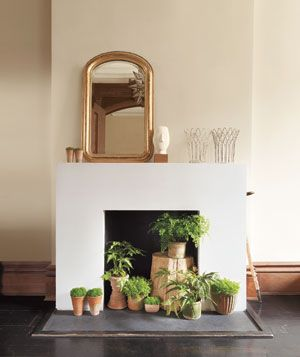 fireplace plants