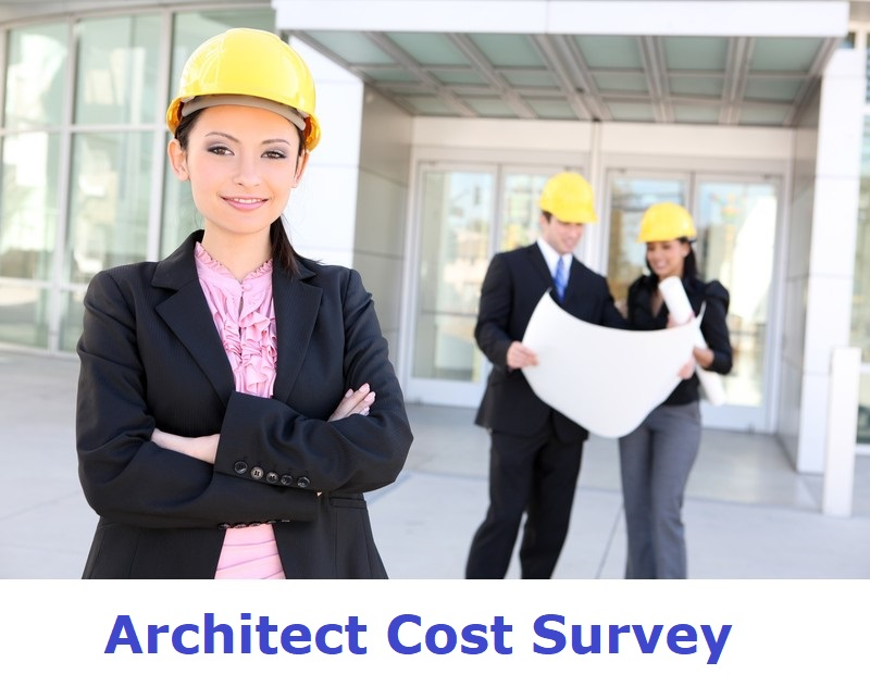 architect cost survey