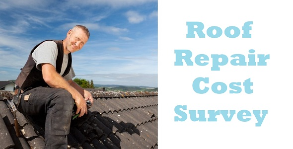 Roof Repair Cost Survey 2021