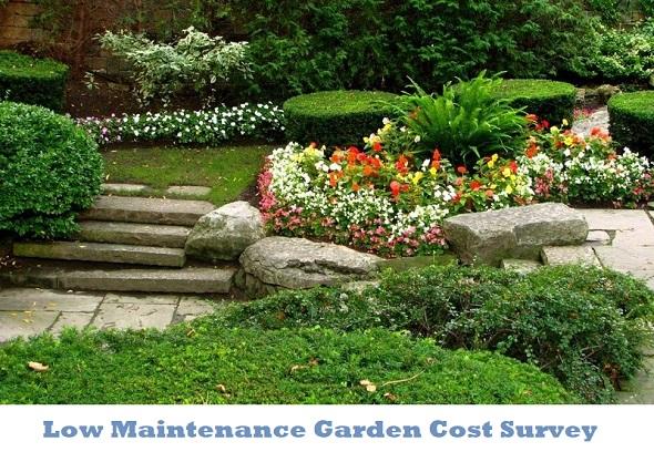 Low maintenance garden price survey